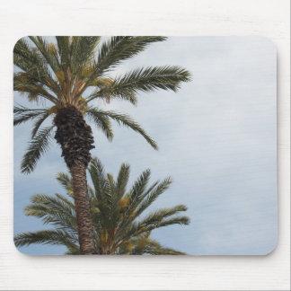 Palm Trees Mousepad