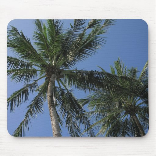 Palm Trees on Mousepad