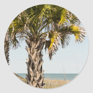Palm Trees on Myrtle Beach East Coast Boardwalk Classic Round Sticker