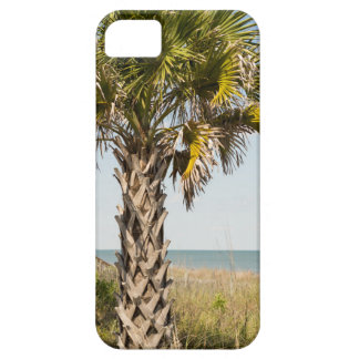 Palm Trees on Myrtle Beach East Coast Boardwalk iPhone 5 Cover