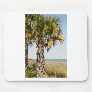 Palm Trees on Myrtle Beach East Coast Boardwalk Mouse Pad