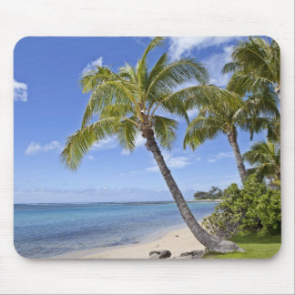 Palm trees on the beach in Hawaii. Mousepad