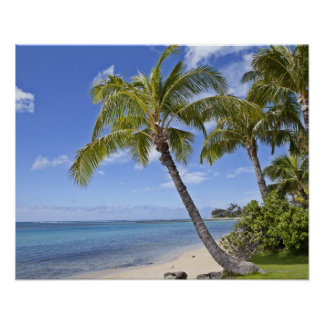 Palm trees on the beach in Hawaii. Print