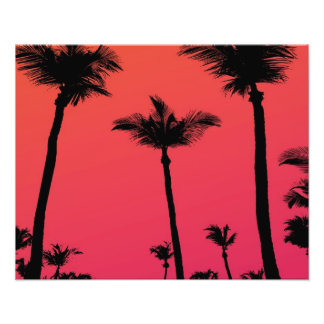 Palm Trees Silhouettes at Sunset Photo Art