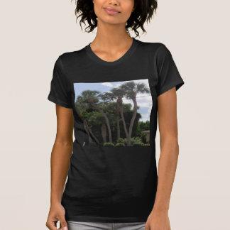 Palm Trees Tshirt