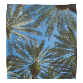 Palm Trees Umbrella Bandana