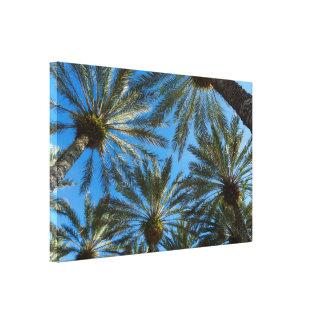 Palm Trees Umbrella Canvas Print