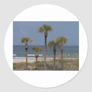 Palm Trees with a Surf Backdrop Sticker