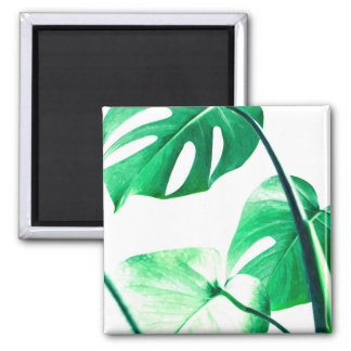 Palm tropical monstera leaves modern watercolor square magnet