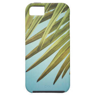 Palm whisk in the summer sky case for the iPhone 5