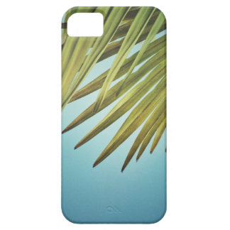 Palm whisk in the summer sky iPhone 5 cases