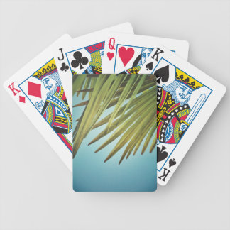 Palm whisk in the summer sky poker deck