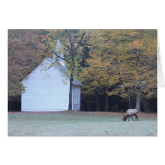 Palmer Chapel and Elk Card