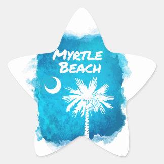 Palmetto Paint Splatter Star Sticker