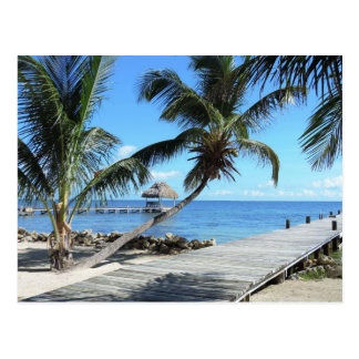 Palms and Pier in Belize Postcard