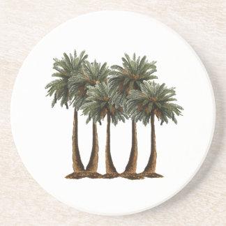 Palms of Paradise Coaster