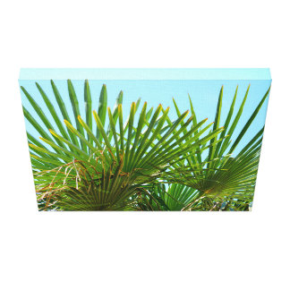 Palmtree with clear sky canvas print