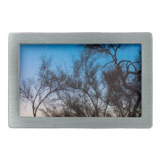 Palo Verde Tree Silhouette Sunrise Belt Buckle