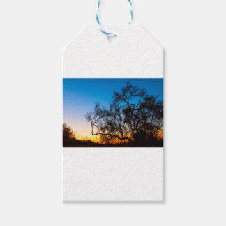Palo Verde Tree Silhouette Sunrise Gift Tags