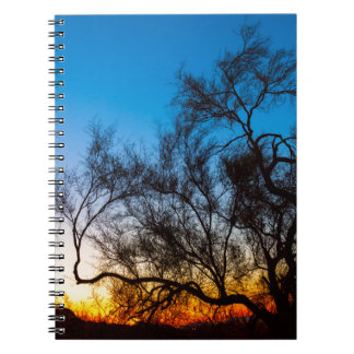 Palo Verde Tree Silhouette Sunrise Notebook