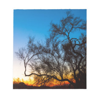 Palo Verde Tree Silhouette Sunrise Notepad
