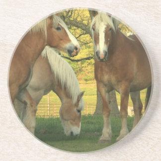 Palomino Draft Horses Coaster