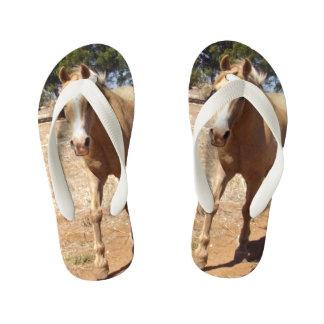 Palomino Horse Greeting, Kid's Thongs
