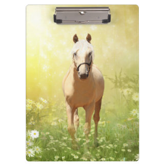 Palomino horse in yellow sunshine clipboard