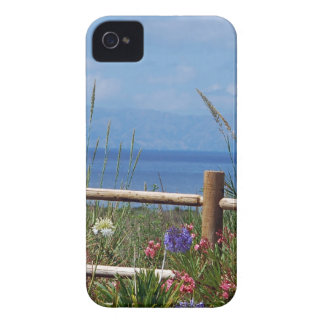 Palos Verdes and Catalina Scene iPhone 4 Covers