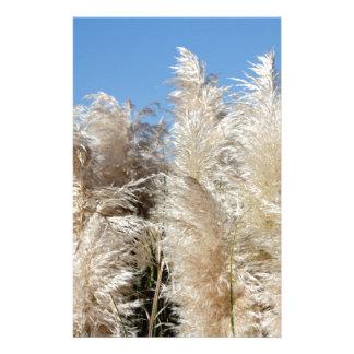 Pampas Grass with a Sunny Blue Sky Stationery