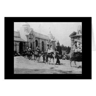 Pan Am Expo Camel Parade 1901 Greeting Card