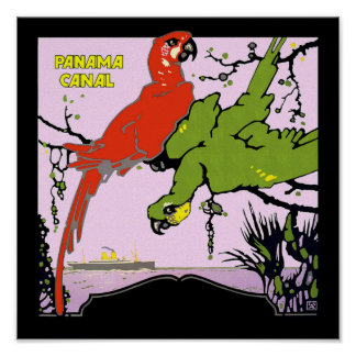 Panama Canal Parrots Posters