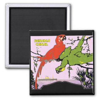 Panama Canal Parrots Square Magnet
