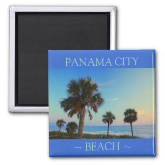 Panama City Beach Palm Tree Florida magnets