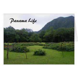 Panama Life Card