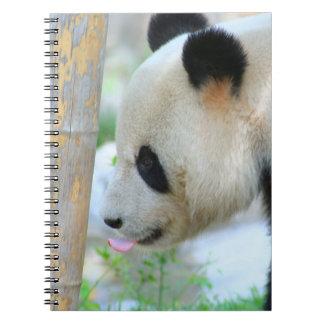 Panda20170502_by_JAMFoto Notebook