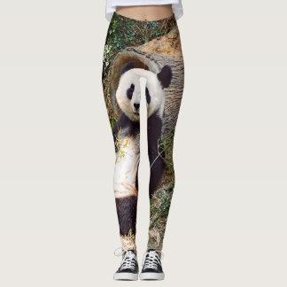 Panda 0315P Leggings