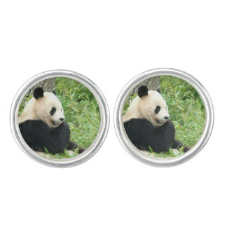 Panda Bear Cuff Links