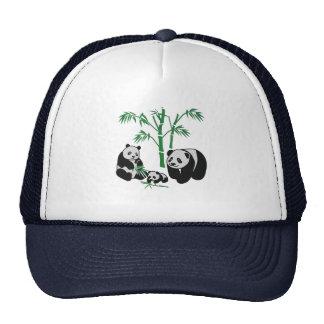 Panda Bear Family Cap
