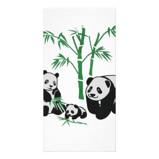 Panda Bear Family Personalised Photo Card