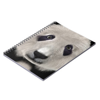Panda Bear Spiral Notebook