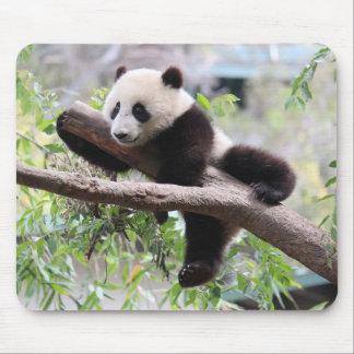 Panda Cub Mouse Pad