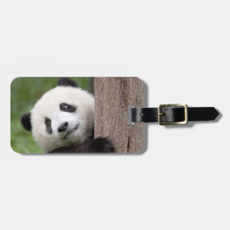 Panda cub painting luggage tag
