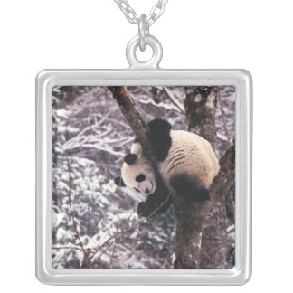 Panda cub playing on tree covered with snow, square pendant necklace