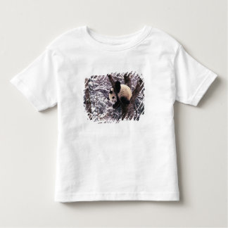 Panda cub playing on tree covered with snow, tee shirts