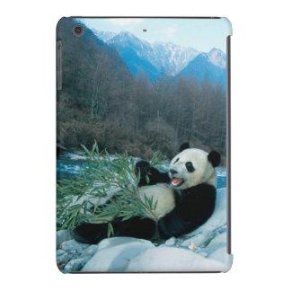 Panda eating bamboo by river bank, Wolong, 2 iPad Mini Cases