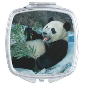 Panda eating bamboo by river bank, Wolong, 2 Travel Mirror
