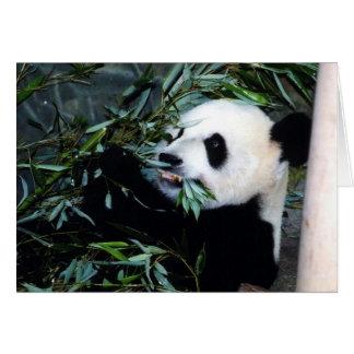 panda eating greeting card