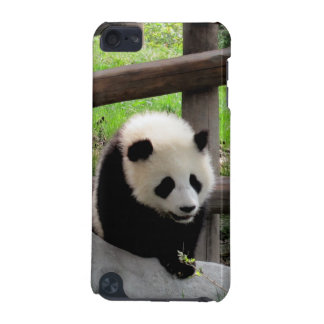 panda iPod touch (5th generation) cases