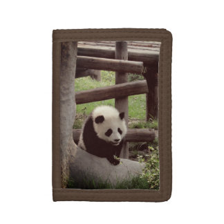 Panda Photo - Retro Style Tri-fold Wallet